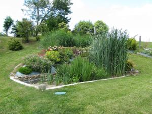 Cycle de formation - L'aménagement extérieur et le jardin. @ Maison de la Consommation et de l'Environnement
